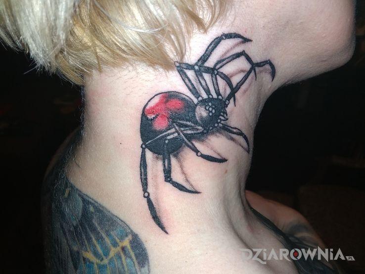 Tatuaż Pajak Autor Sowa Dziarowniapl