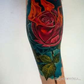 Róża w płomieniach