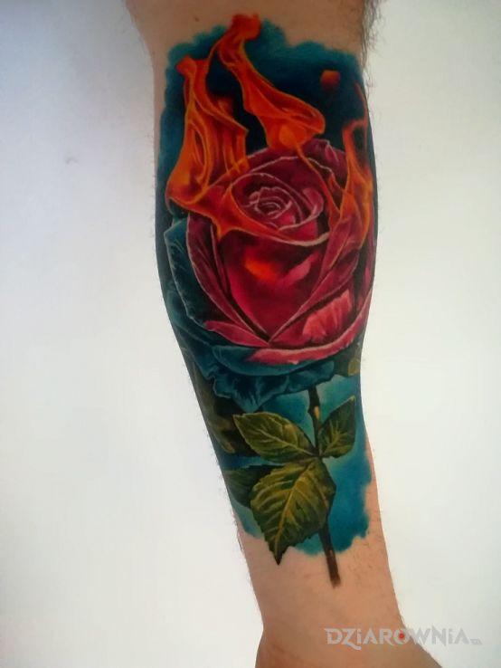 Tatuaż róża w płomieniach - kolorowe
