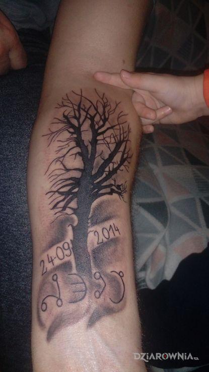 Tatuaż Drzewo Autor Maciej Krupczak Dziarowniapl