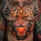 Oryginalny tygrys