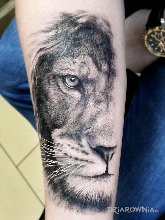 Tatuaż Lew Autor Bghtattoostudio Dziarowniapl