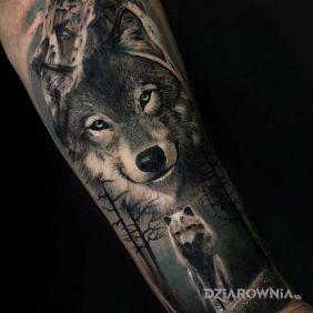 Uśmiechnięty wilk