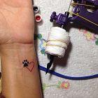 Łapka i serce