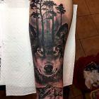 Wilk z drzewami