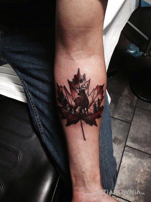 Tatuaż Liść Klonu Autor Bella Dziarowniapl