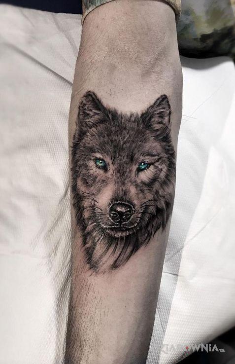 Tatuaż Wycena Autor Unaleh Dziarowniapl