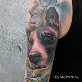 Piesek i Bartosz Tatuażu