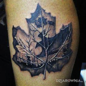 Fajnie wyglądający liść