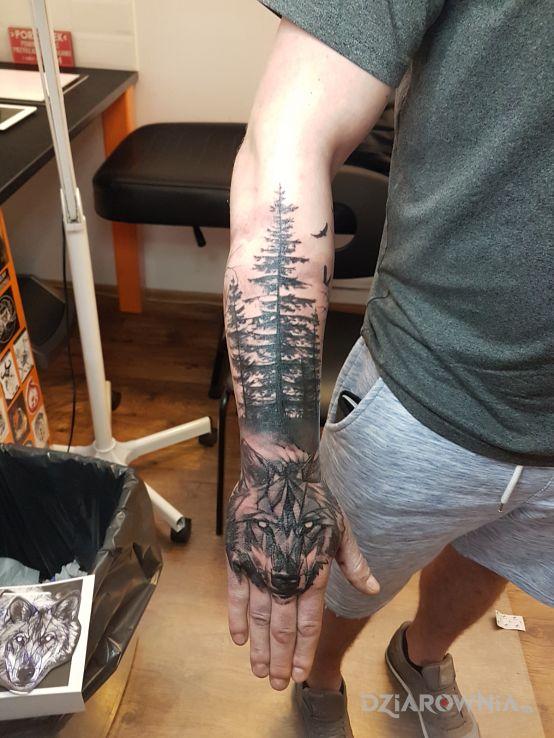 Tatuaż Wilk Las Autor Sky Tattoo Dziarowniapl