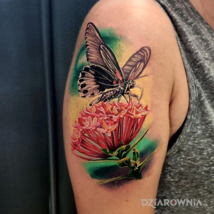 Tatuaż Motyl I Kwiat Autor Sky Tattoo Dziarowniapl